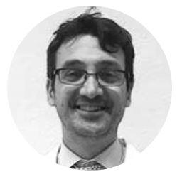 Prof. Tullio Ghi - University of Parma, Italy